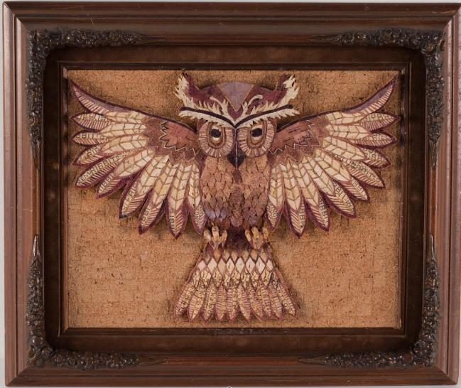 hi res owl